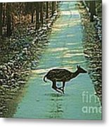 Lonely Deer Metal Print