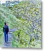 Lonely Path Metal Print