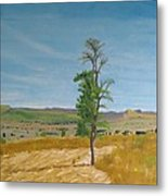 Lonely Tree In Africa Metal Print