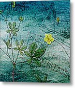 Long Ago And Far Away Metal Print