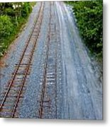 Long And To The Left Metal Print