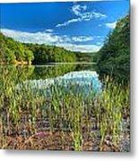 Long Branch Lake Marsh Metal Print by Adam Jewell