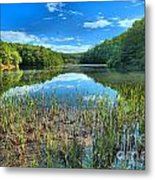 Long Branch Marsh Metal Print by Adam Jewell