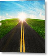 Long Road In Beautiful Nature  Metal Print