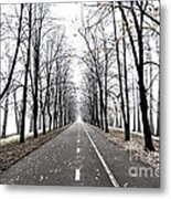 Long Way Metal Print