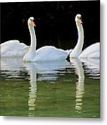 Look Over There Metal Print