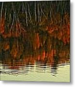 Loon In Opeongo Lake With Reflection Metal Print