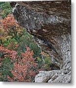 Lost Maples Fall Scene Metal Print