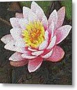 Lotus In The Rain 3 Metal Print