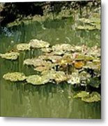 Lotus Pond 2 Metal Print