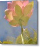 Lotus Reflection Metal Print