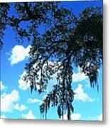 Louisiana Skyscape Metal Print