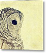 Lovely Lucy Barred Owl Metal Print
