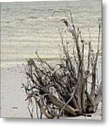Lovers Key Beach Metal Print