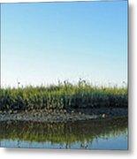 Low Tide In The Tidal Creek Metal Print