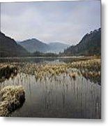 Lower Lake, Glendalough, County Metal Print