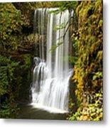 Lower South Falls At Silver Falls Metal Print