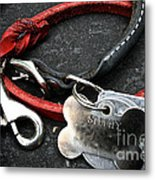 Lucky Red Lead Metal Print