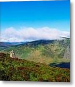 Luggala And Lough Tay, Co Wicklow Metal Print