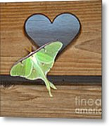 Luna Moth In Love Metal Print