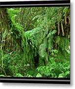 Lush Green Landscape Metal Print