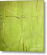 Lush Metal Print by Neil Overy