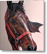 Lynette's Quarter Horse Metal Print