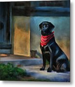 Mack Waits Metal Print by Suni Roveto