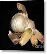 Macro Garlic Metal Print
