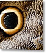 Macrophotograph Of Owl Butterfly Wing Metal Print