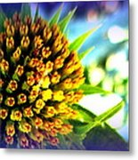 Magic Flower Metal Print by Maria Scarfone