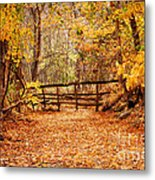 Magical Autumn Metal Print by Cheryl Davis