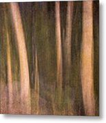 Magical Wood Metal Print