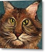 Mainecoon The Cat Metal Print by Kostas Koutsoukanidis