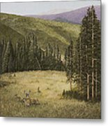 Majesty In The Rockies Metal Print