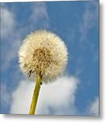 Make Another Wish Metal Print