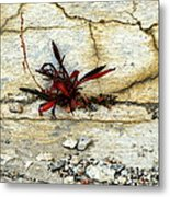 Making Peace With It Metal Print