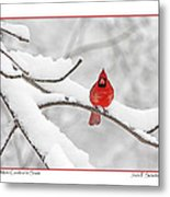 Male Cardinal In Snow Metal Print