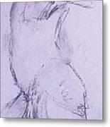Male Nude 4281 Metal Print