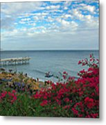 Malibu Beauty Metal Print