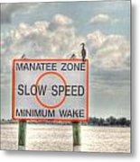 Manatee Zone Metal Print