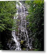 Mango Falls Metal Print by Randy Edwards