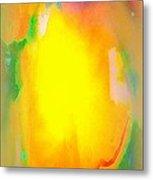 Mango In Mist Metal Print by Wendy Wiese