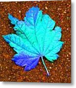 Maple Leaf On Pavement Metal Print