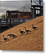 March To The Water Metal Print