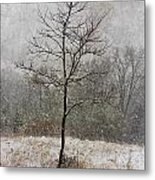 March Tree Metal Print