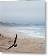 Marina Beach Fly By In The Mist Metal Print
