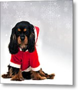 Marmaduke With Snowflake Background Metal Print by Jane Rix