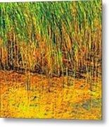 Marsh Colors  Metal Print
