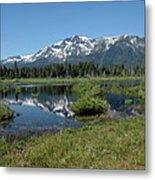 marsh Flowing to Lake Tahoe Metal Print